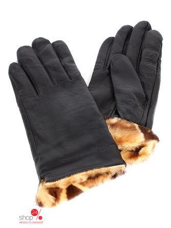 Перчатки Högl